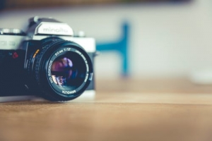 Making Macro Photography Better: 10 Tips for Practitioners
