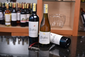 Raise A Glass! Viva Wine Trade Expo