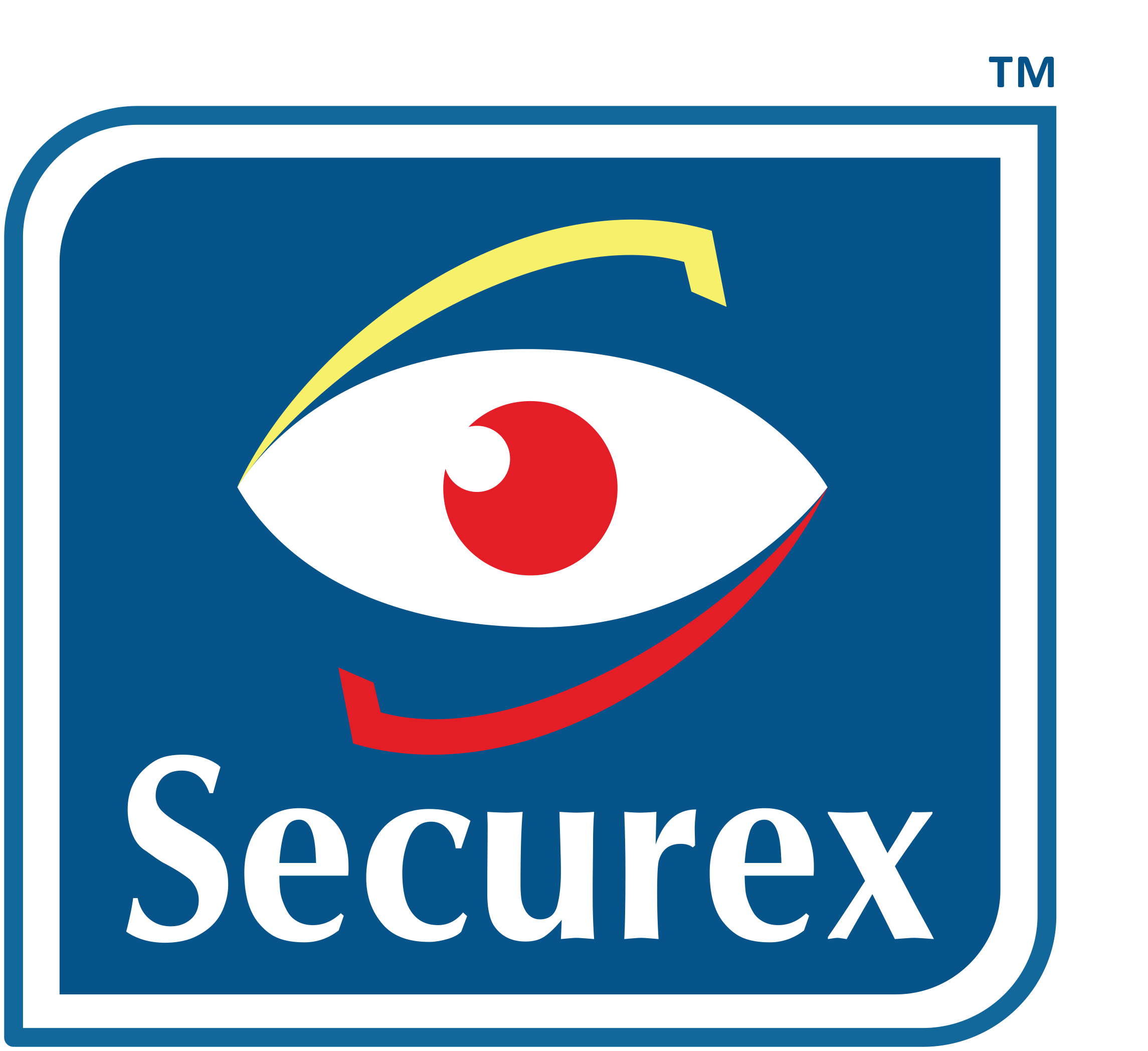 Securex Agencies Kenya Ltd