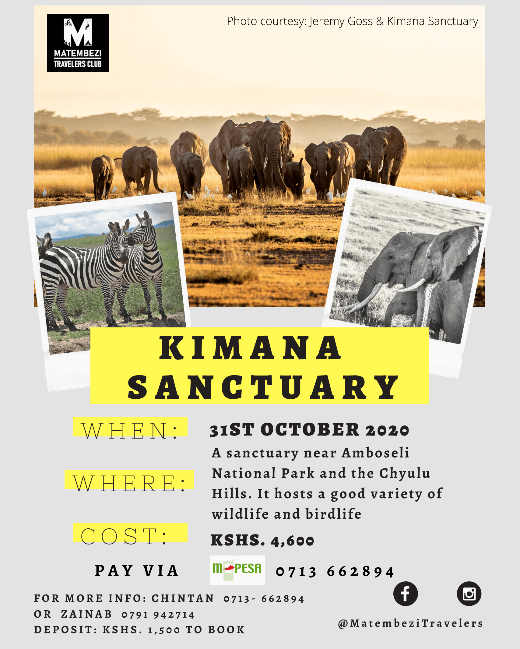 Kimana Sanctuary Day Safari