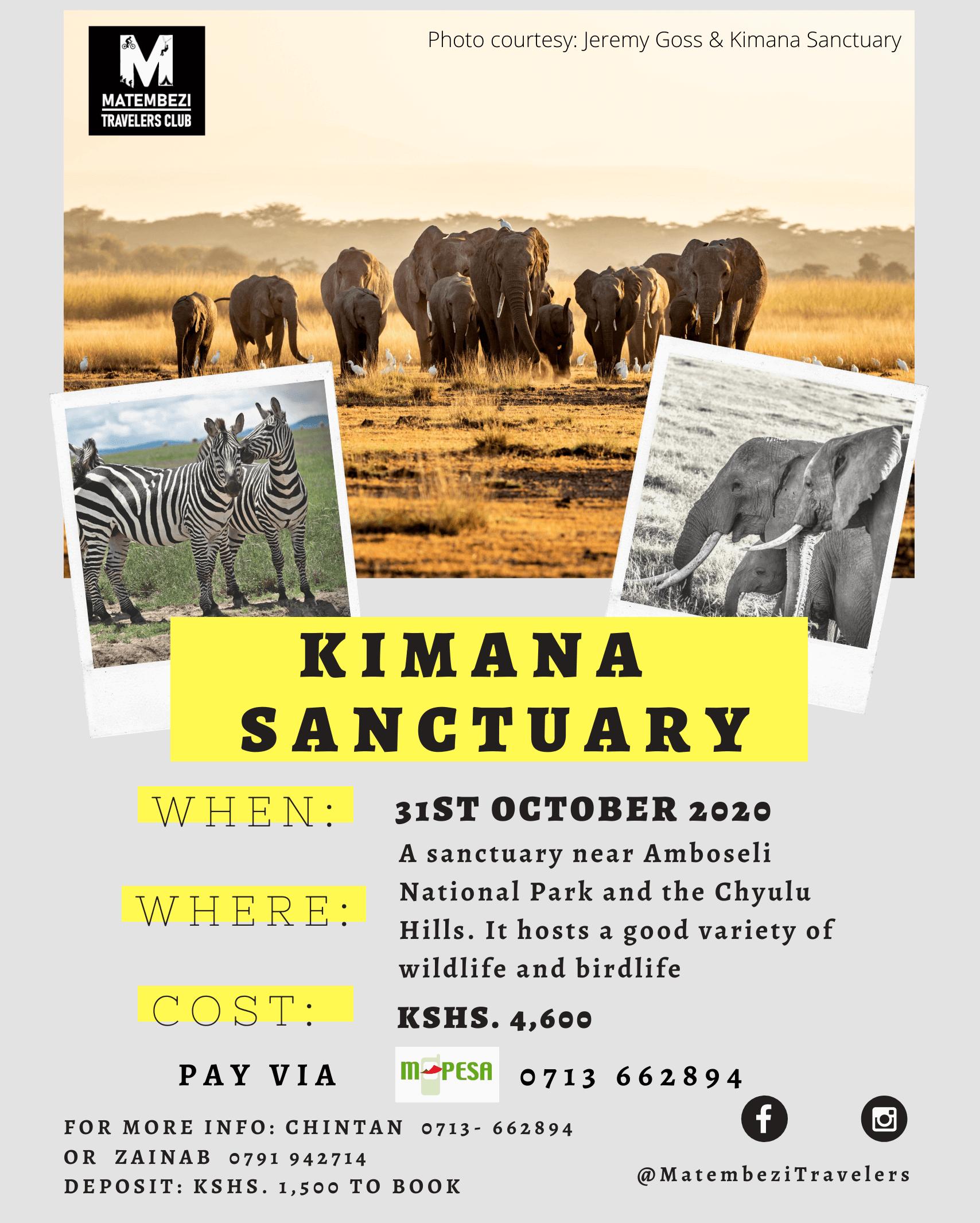 Kimana Sanctuary Day Safari