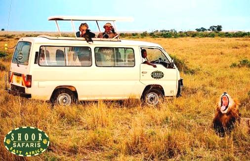 Shoor Safaris Africa