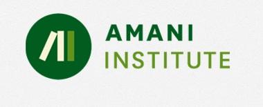 The Amani Institute