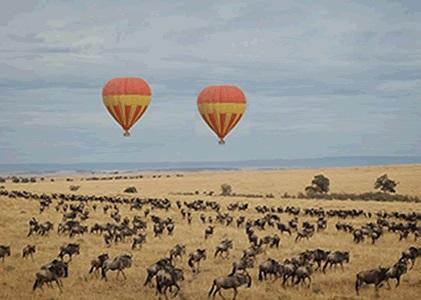 Africa Balloon Fiesta